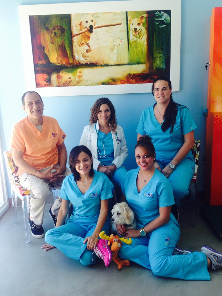 Thank you to the amazing vet technicians at EZ Vet Clinic!